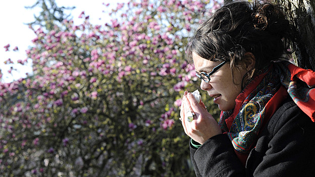 Pollenallergiker leiden vor allem im Frühjahr unter Niesattacken.