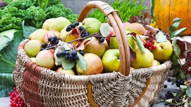 Bei diesem saftigen Anblick, kriegen auch Fruchtfliegen Appetit.