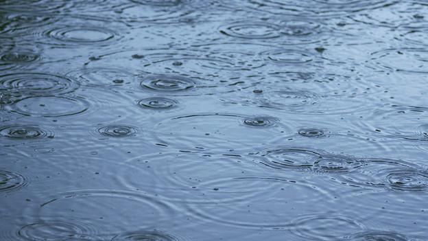 Regentropfen verzaubern die Oberfläche eines Sees in ein Kunstwerk.
