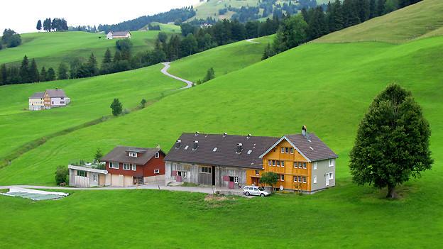 So typisch Landschaft und Häuser im Kanton Appenzell, so typisch ist auch der Appenzeller Dialekt. Das Gleiche gilt für den Kanton Uri.