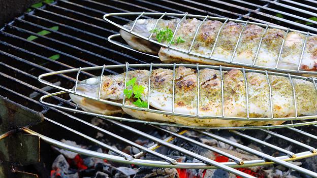 Fisch in speziellem Grillbräter auf Grill.