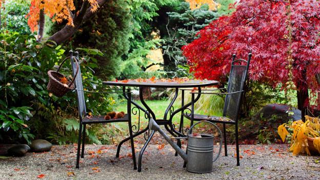 Noch liegen die Herbstblätter spärlich auf dem Gartensitzplatz. Werden es mehr, gibt es verschiedene Möglichkeiten sie auch auf steinigem Untergrund mühelos zu beseitigen.