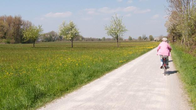 Eine ältere Radfahrerin auf einem Feldweg.