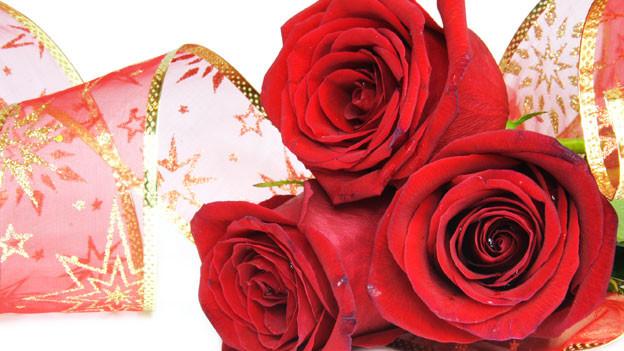 Drei rote Rosen werden von Ornamentband umschmeichelt.