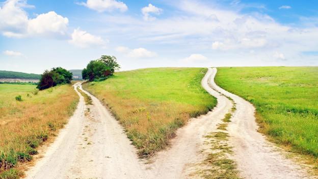 Ein Weg, der sich in zwei Wege teilt.