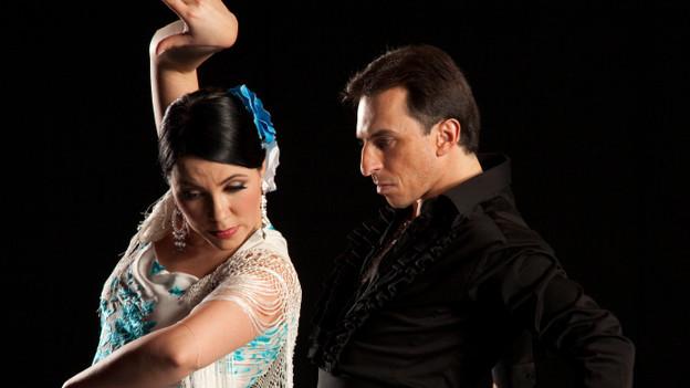 Flamencotänzerin und -tänzer in feuriger Pose.