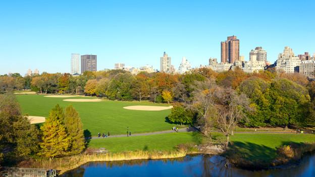 Blick über den herbstlichen Central Park in New York City.