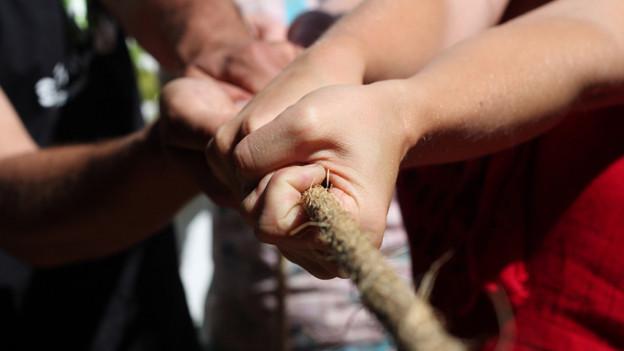 Mehrere Hände, die am gleichen Strick ziehen.