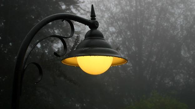 Eine brennende Strassenlampe an deren Rand ein paar goldig leuchtende Regentropfen hangen.