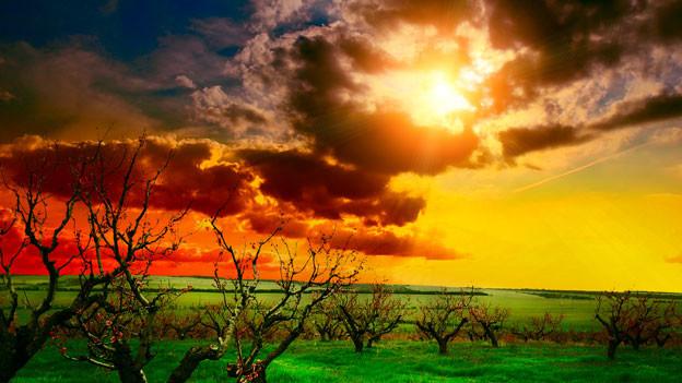 Sonnenuntergang über offenem Feld.