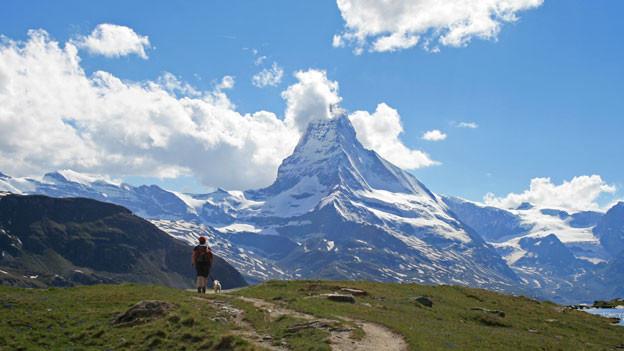 Wanderer mit Hund auf Alpwiese. Im Hintergrund das Matterhorn.