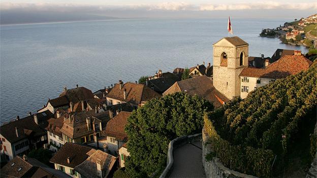 Blick auf das Städtchen Saint Saphorin am Genfersee.
