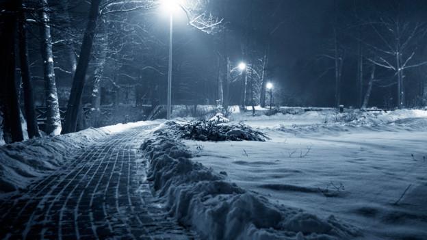 Verschneite Landschaft. Ein steinerner Weg führt in einer Kurve durch die Wiese. Am Strassenrand leuchten Strassenlaternen.