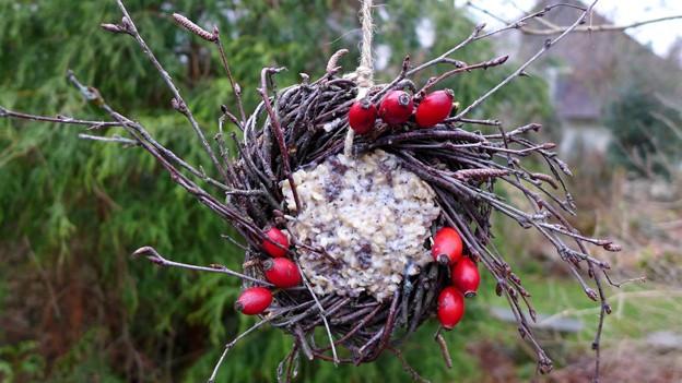 Birkenkranz gefüllt mit Vogelfutter.