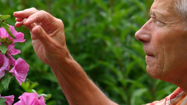 Ein älterer Mann vor einem blühenden Strauch.
