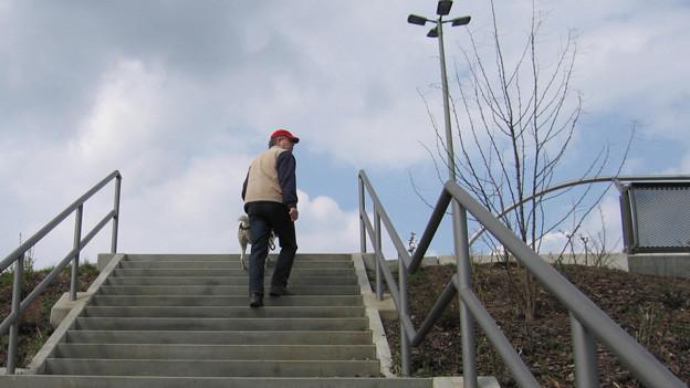 Mann geht steigt Treppe in Park hoch.