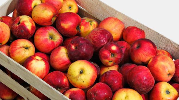 Eine Holzkiste voll roter Äpfel.