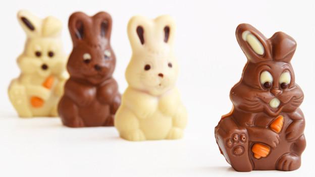 Zwei weisse und zwei dunkle Osterhasen aus Schokolade.