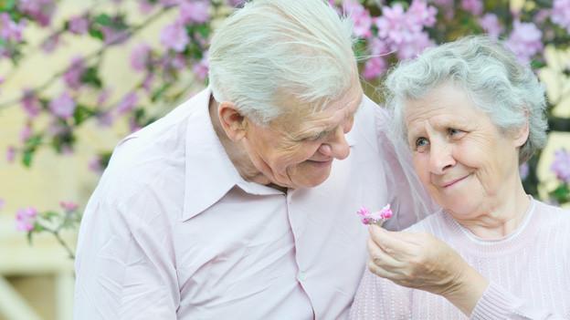 älteres Paar vor blühendem Kirschbau. Er überreicht seiner Angebeteten eine Blüte.