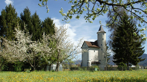 Kleines Schloss mit Turm hinter einer Frühlingswiese.