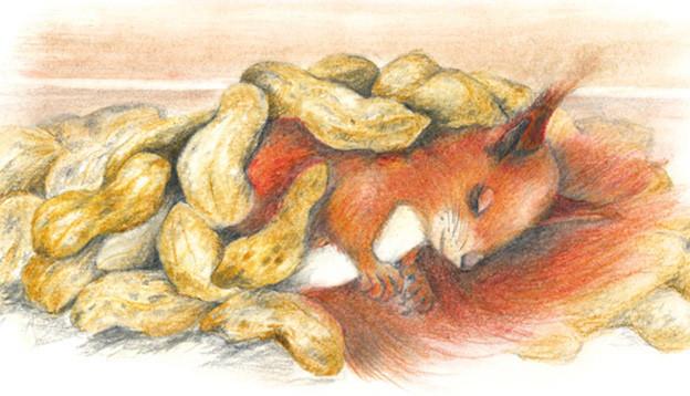 Illustration von einem Eichhörnchen, das unter einem Berg von Spanischen Nüssen liegt.