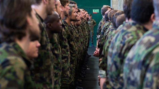 Soldaten stehen in Tarnanzügen in Reih und Glied.