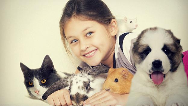 Ein kleines Mädchen ist umgeben von Katze, Kaninchen, Meerschweinchen, weisser Maus und Hund.