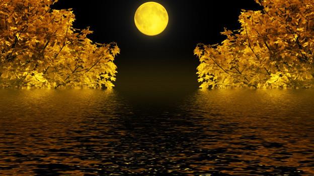 Der Vollmond steht mitten zwischen zwei Bäumen und spiegelt sich in einem See.