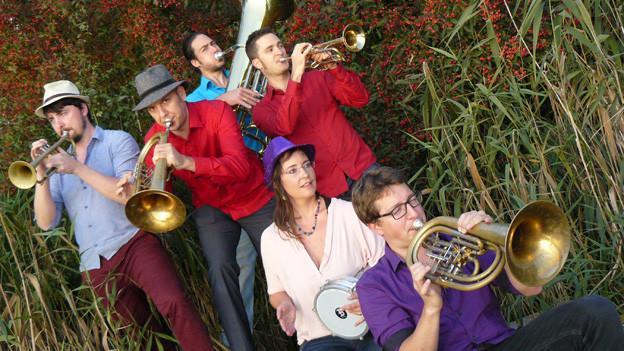 Eine Musikerin und fünf Musiker mit ihren Instrumenten stehen im Freien umgeben von Schilf und Sträuchern.