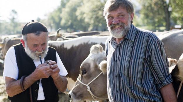 Bauern mit einer Herde Kühe. Ein Bauer zündet sich eine Pfeife an.
