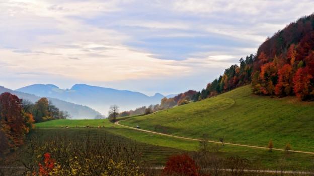 Herbstliche Landschaft im Baselland.