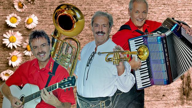 Pressefoto der Band in Trachtenoutfit und mit Instrumenten.