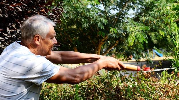 Mann mit Gartenschere beschneidet Strauch.