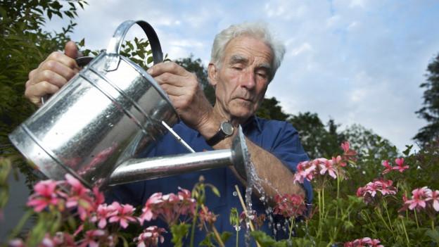Senior giesst seine Blumen.