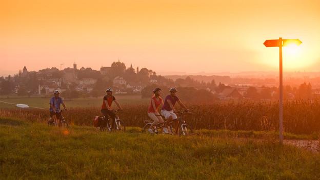 Drei Radfahrer und eine Radfahrerin unterwegs bei Sonnenuntergang.