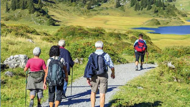 Wandergruppe von Senioren auf dem Wag zum Lauenensee.