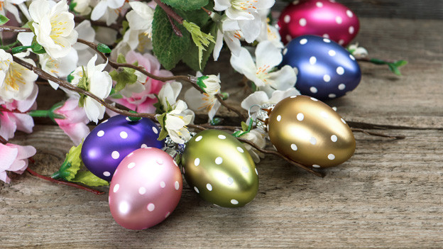 Verschieden farbige und mit weissen Punkten versehene Eier vor einer Blumendekoration.