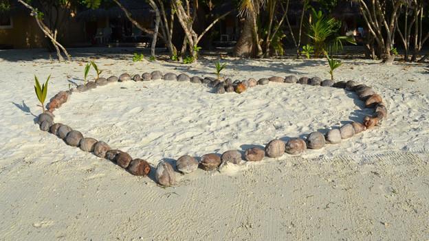 Ein aus Kokosnüssen geformtes Herz auf einem Sandstrand.