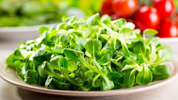 Feldsalat in Schale