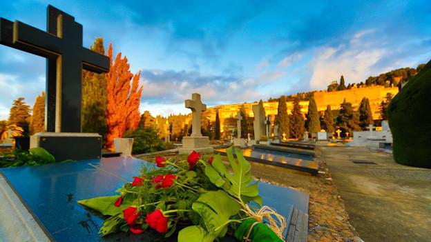 Vor einem Grab auf einem alten Friedhof liegt ein Strauss roter Rosen.