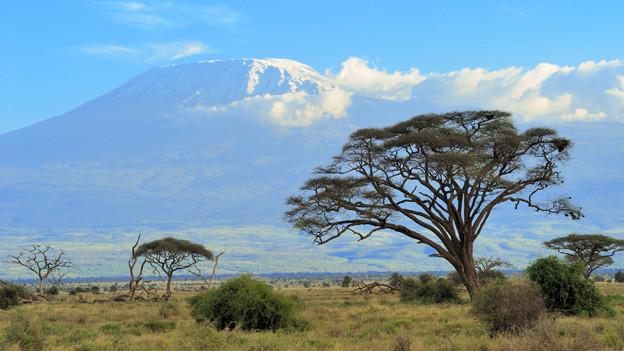 Die weite Steppe vor dem mächtigen Kilimanjaro.