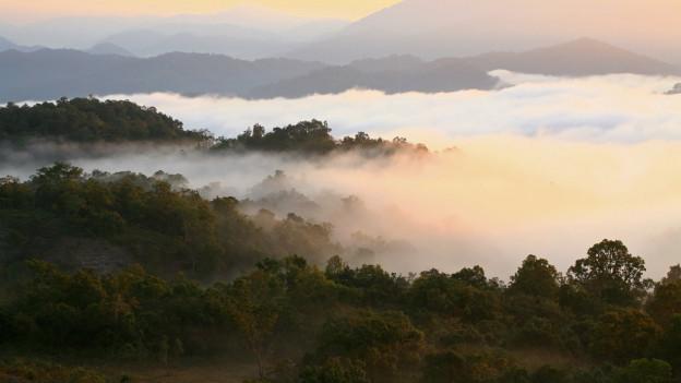 Sonnenstrahlen treffen auf ein Nebelmeer, das sich zwischen Hügeln breit macht.