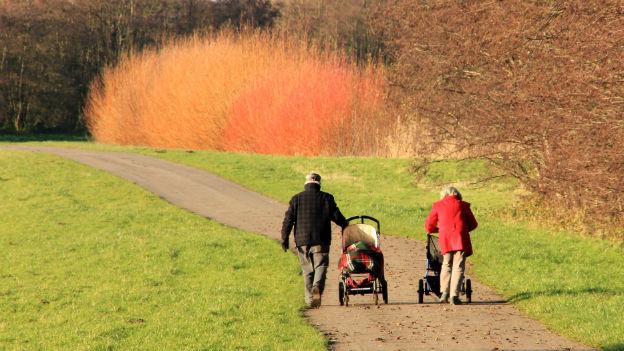 Spaziergänger an einem sonnigen Tag auf einem Feldweg.