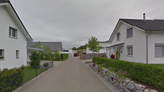 Blick auf eine Quartierstrasse, an deren Rand Häuser stehen.