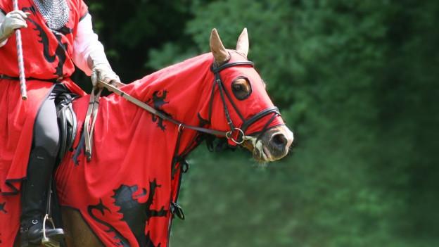 Ritter in Rüstung auf rot gekleidetem Pferd.