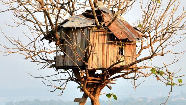 Ein Baumhaus auf Ästen gebaut.