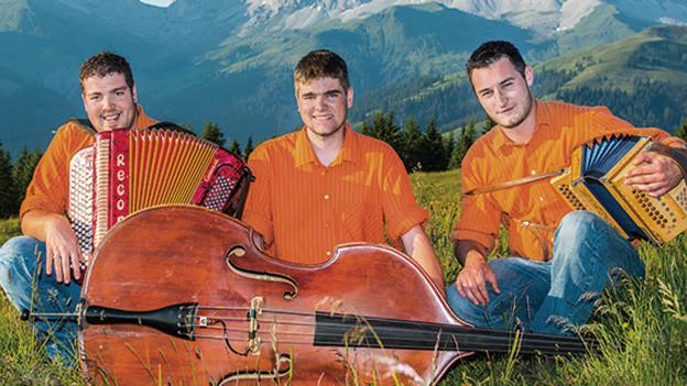 Drei Musiker mit ihren Instrumenten auf einer Wiese.
