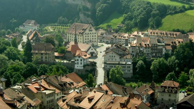 Blick über die Stadt Freiburg.