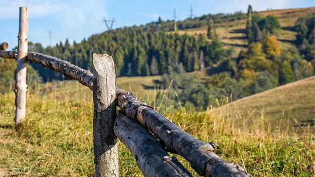 Ein Holzzaun am Rand einer Wiese.