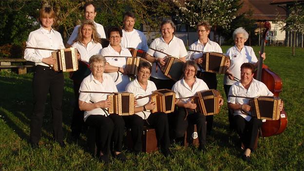 Eine Gruppe von Männern und Frauen, die Schwyzerörgeli spielen.